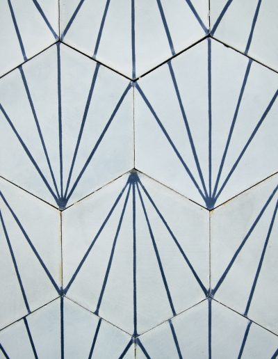 Dandelion icicle/marine