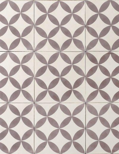 Essaouira - lavendel